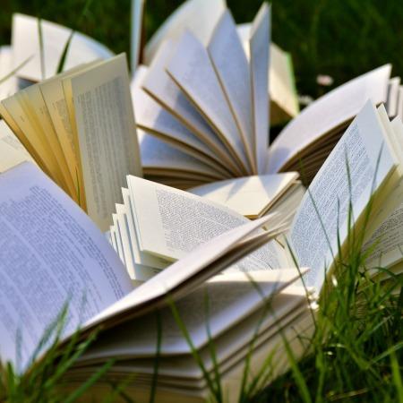 literatura e redação no vestibular